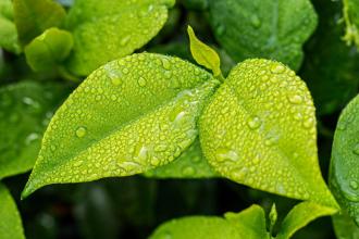 5 důvodů proč používat ekodrogerii