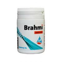 BRAINWAY Brahmi 100 kasplí