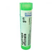 BOIRON Euphrasia Officinalis CH5 4 g