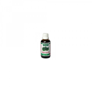 FINCLUB Aleramis 50 ml
