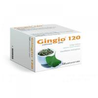 GINGIO 120 120 x 120 mg Potahované tablety