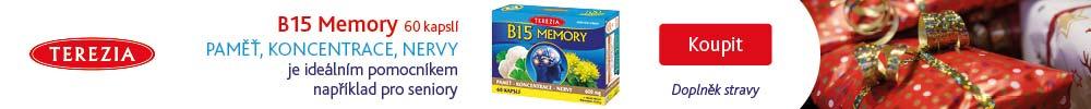 KT_vanoce_terezia_B15_memory_pro_babicku