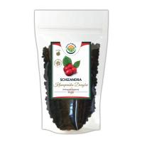 SALVIA PARADISE Schizandra klanopraška plod Dongbei 100 g